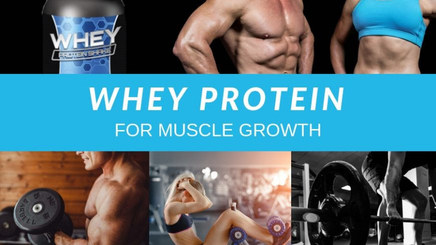 WHEY PROTEIN FOR MUSCLE GROWTH